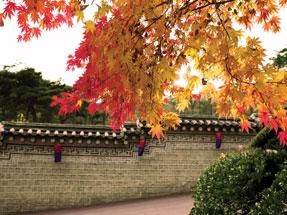 Autumn_Seoul
