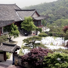 Seoul's Majestic Mountain Getaways