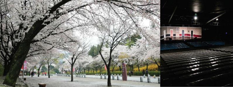 11 서울대공원